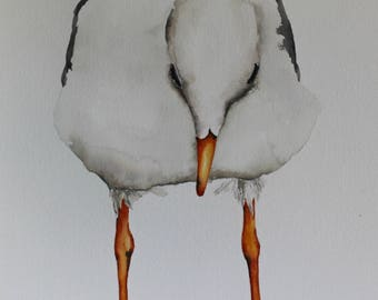 Seagull watercolor bird painting by Betty Moore