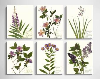 Purple Flower Print Set of 6; purple wall art purple botanical print daisy art lilac art azalea purple décor purple wildflower 11x14 8x10