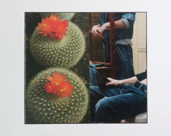 cacti 1 (original collage)