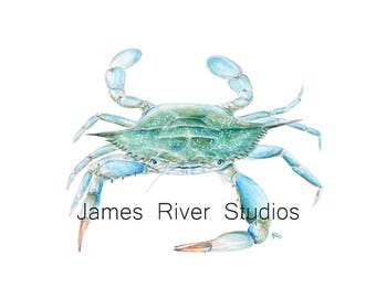 Blue Crab Art Blue Crab Painting Blue Crab Print Crab Watercolor Painting Shellfish Art Blue Coastal Art Beach Art Ocean Art Sea Art Print.