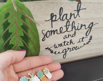 Succulent Plant Pin Set