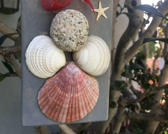 Sea Shell Angel