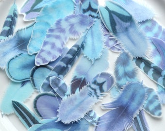 Edible Feathers Frozen Winter Wedding Cake Decorations Boho Wafer Rice Paper Blue Aqua Ice Rustic New Years Eve Cupcake Toppers Cookies