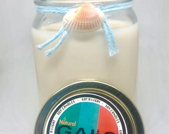 Odor Eliminator 12oz Mason Jar Soy Wax Organic Candle