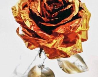 Orange Metal Rose (copper)