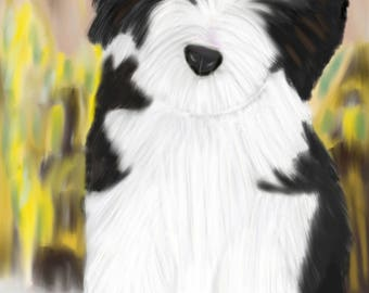 Hand-drawn Bearded Collie puppy greeting card, on a pawprint tablecloth.
