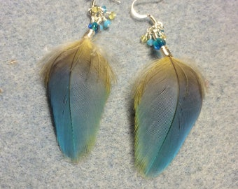 Blue with a splash of yellow macaw feather earrings adorned with tiny dangling turquoise and yellow Chinese crystal beads.