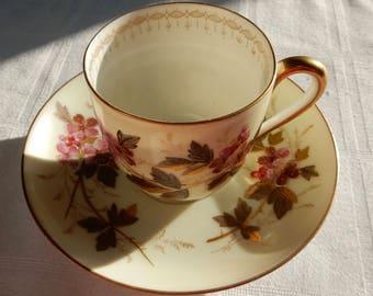 SALE Antique Demitasse Tea Cup and Saucer - Carl Knoll Carlsbad Demitasse Cup and Saucer - Antique Porcelain Germany Demitasse Teacup Set