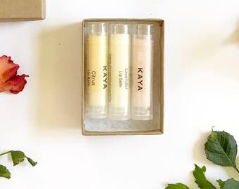 Gift Box 3 Lip Balms | 100% Natural | Luscious Lips Lip Balms | Lavender, Citrus, Rose | Christmas | Thanksgiving