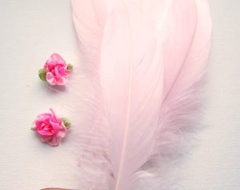 10 Pale Pink Natural Feathers - Pink feathers - Baby pink pastel feathers - Light Pink Feathers - Pink Feather Quills