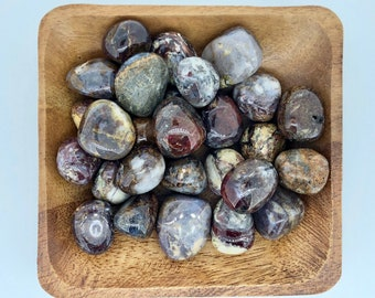 Pietersite Tumbled - Root Chakra - First Chakra - Energy Healing