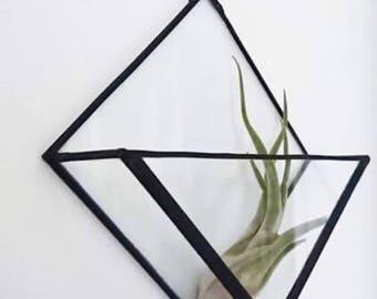 Wall mounted triangle terrarium