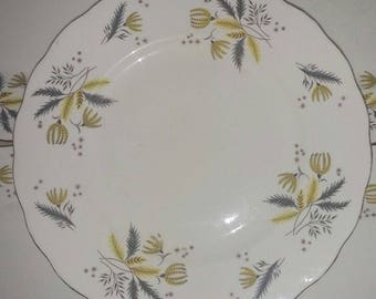 Vintage Colclough China Stardust Star Dust Dinner Plate