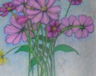 cosmos flower drawing