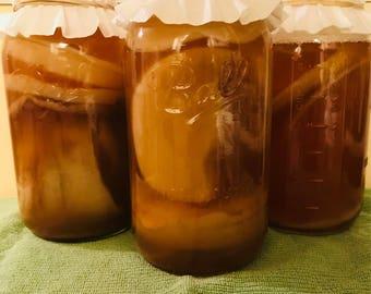 Organic Kombucha SCOBY with starter liquid!