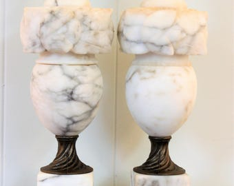 PAIR Italian Alabaster Marble Carved with Flowers and Leaves Neoclassical Table Lamps