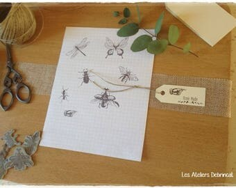 Set of 7 stamps insect curiosity non fitted with acrylic block