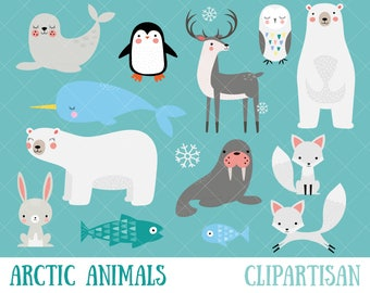 Arctic Animals Clipart   Winter Animals Clip Art   Polar Bear   Penguin   Seal   Walrus   Hare   Fox   Narwhal   Reindeer   Snowy Owl
