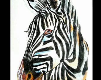 25%OFF ZEBRA African Sunset Wild Animal Africa Colored Pencil Abstract Art PRINT By Scott D Van Osdol 11x17 Poster Of My Original Ready To F