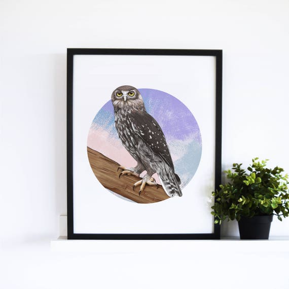 The Barking Owl // Abstract Collection