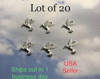 20 hummingbird charms