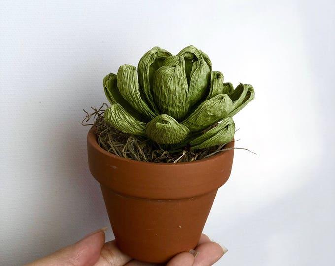Paper Succulent in Clay Pot