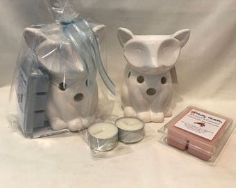 Wax Melt Starter Set - Fantasy Fragrances