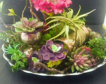 Purple and green faux succulents in vintage silver, brass and copper garden with fairy lights