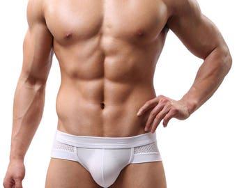 Men Sexy Underwear FREE SHIPPING Boxer Shorts White Panties mesh Men's Underwear Sexy panties Men briefs