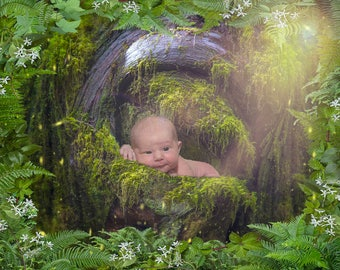 Newborn Forest Background