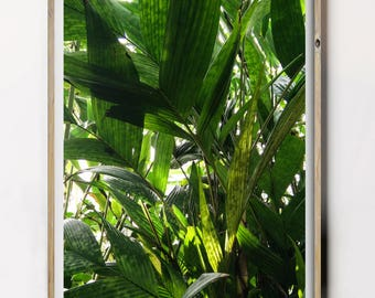 Green Leaf Printable, Tropical Leaf Poster, Greenery Print, Green Photography, Lush Green Leafs, Botanical Wall Decor, Botanical Photography