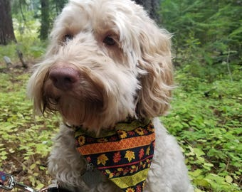 Cute Fall/Thanksgiving Leaf, Flowers, and Holly Pattern Dog Bandana