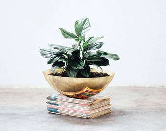 Flowerpot Topacio