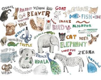 Animal Print (Animals A-Z)