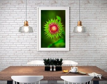 Wild Beauty; Artist: Kim Jones, photographer and owner of KimmyLou Images; Botanical Home Decor by KimmyLou Images