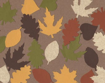25 - Leaf Die Cuts  for Paper Crafts Fall Colors Paper Crafts Card Making Set 7