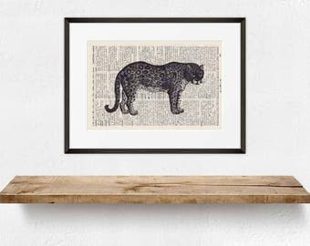 Print leopard-on antique page