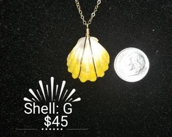 Sunrise shell and chain