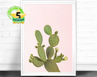 Cactus Print, Cactus Wall Art, Desert Cactus Photo, Cactus Art, Cactus South Western Decor, Cactus Photography, Pink and Green Printable Art