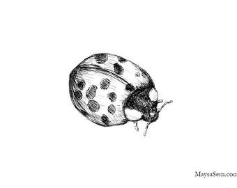 Ladybug - Art Print