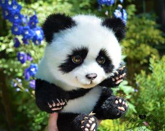 Meet the little panda