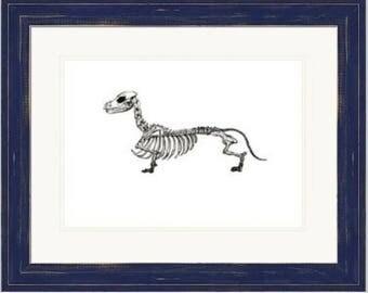 Hand Drawn Daschund/Sausage Dog Skeleton Print