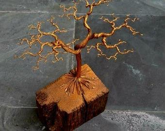 Handmade Wire Bonsai Tree Sculpture (23cm high)