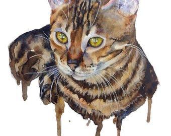 Custom Cat Portrait FREE SHIPPING