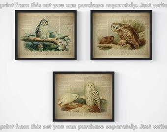 Vintage bird print set, Set of 3 own prints, Digital download print, Printable bird set, Antique wall art, Set of own prints, Illustrations