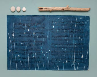 "Original cyanotype ""Blades of rush"" on old, double-sided sheets of music"