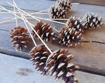 Set of 10 Stemmed Pine Cones, Natural Pine Cones, Rustic Wedding Decor,Woodland Wedding, Wedding Supply, Pinecones, Natural Bouquet, decor