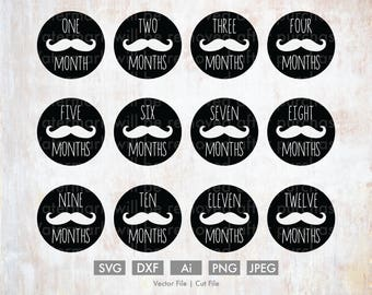 Baby Months 1-12 Mustache Svg Bundle - Cut File/Vector, Silhouette, Cricut, SVG, DXF, Clip Art, Download, Baby, Birthday, Age, one year, boy