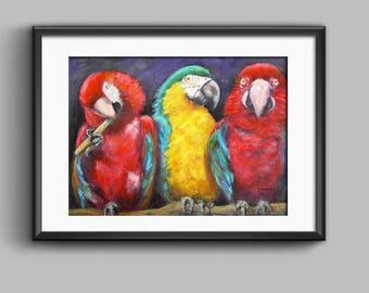 Parrot Print, Parrot Art, Maccaw Art, Parrots, Wall Art