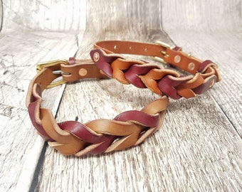 Braided Classic Buckle Leather Dog Collar